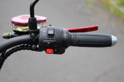 elektro-scooter-e-scooter-chopper-fat-bike.coco-bike-matt-schwarz-p01-20
